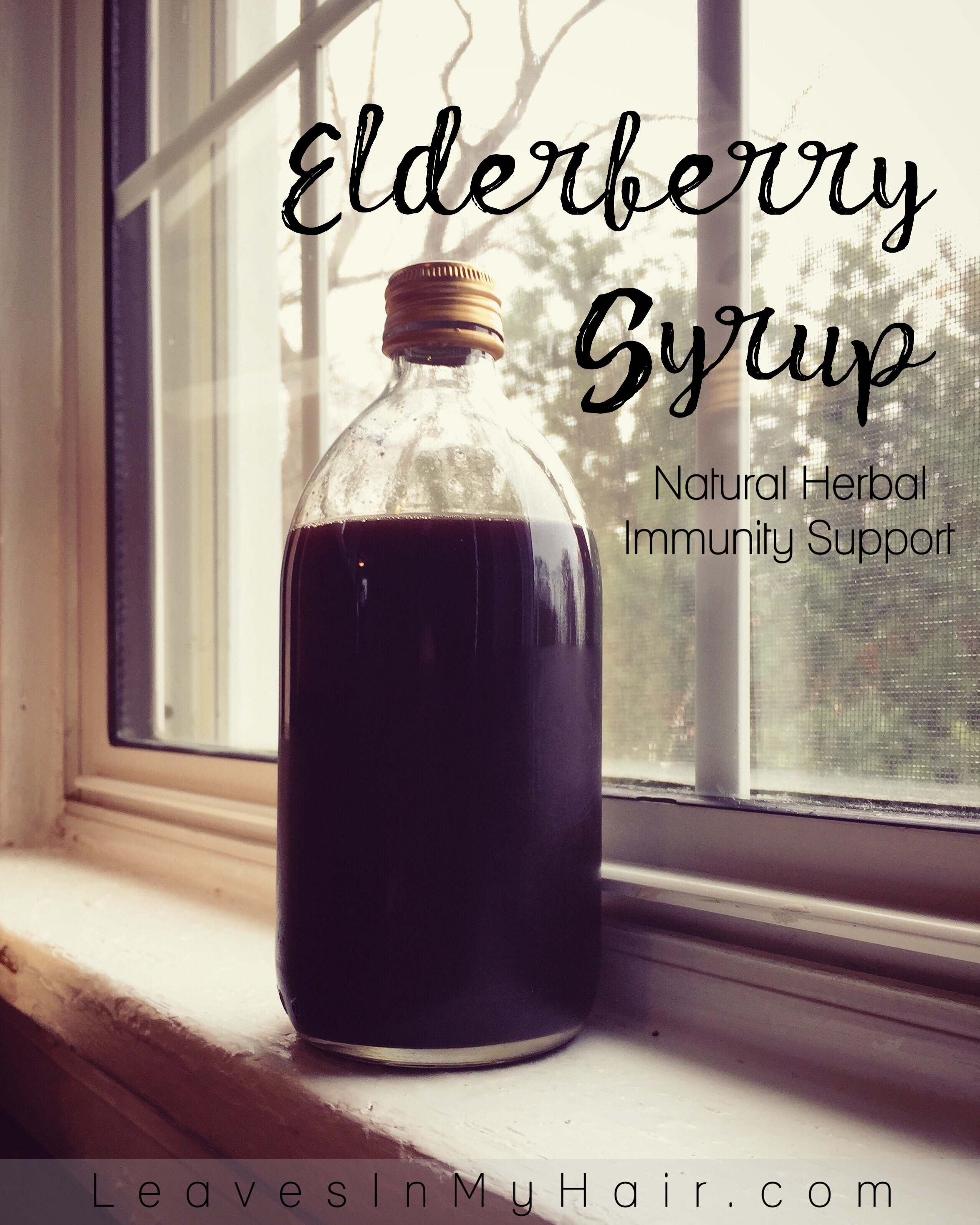 Elderberry Syrup: a Natural Herbal Immunity Support