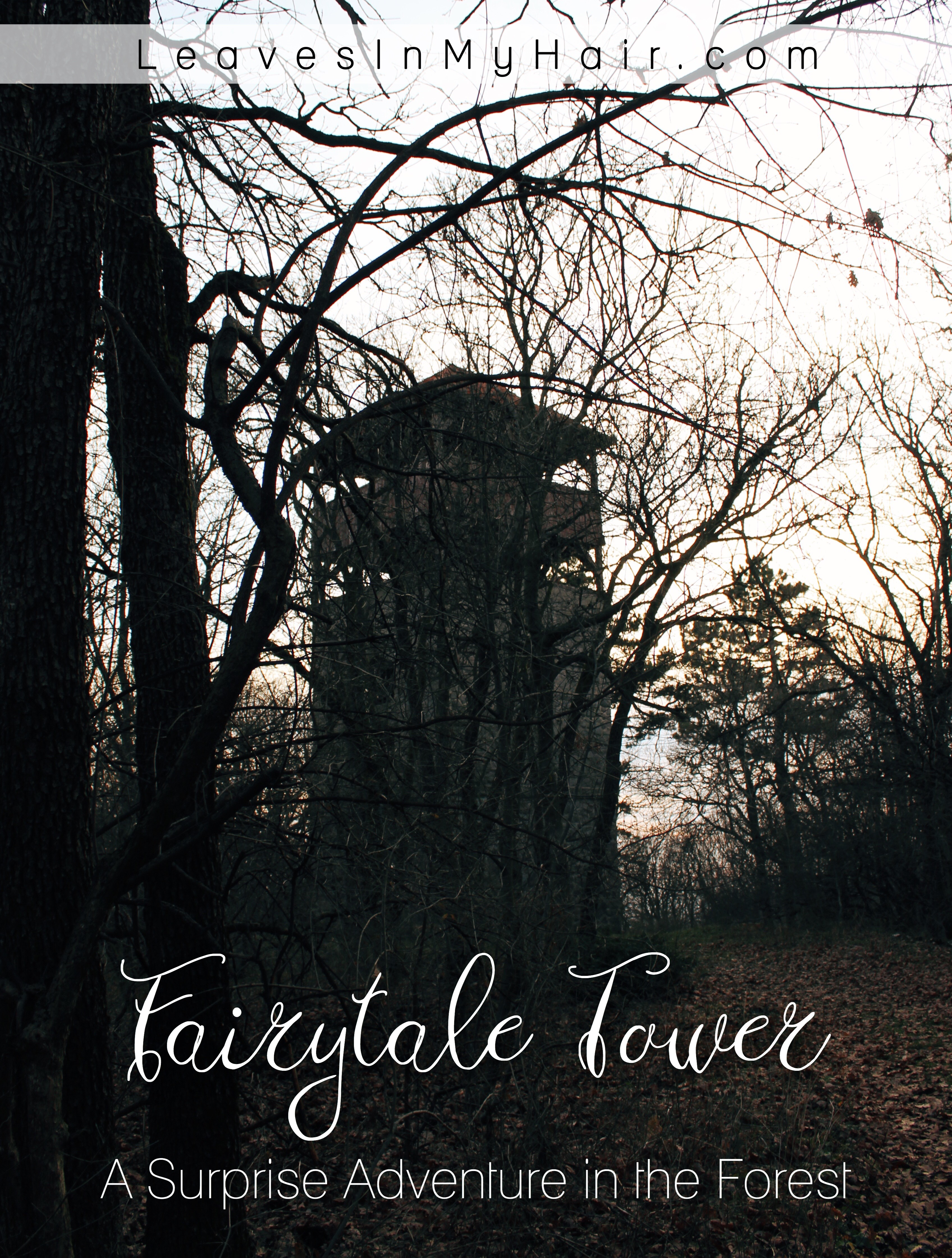 Fairytale Tower: A Surprise Adventure in the Forest